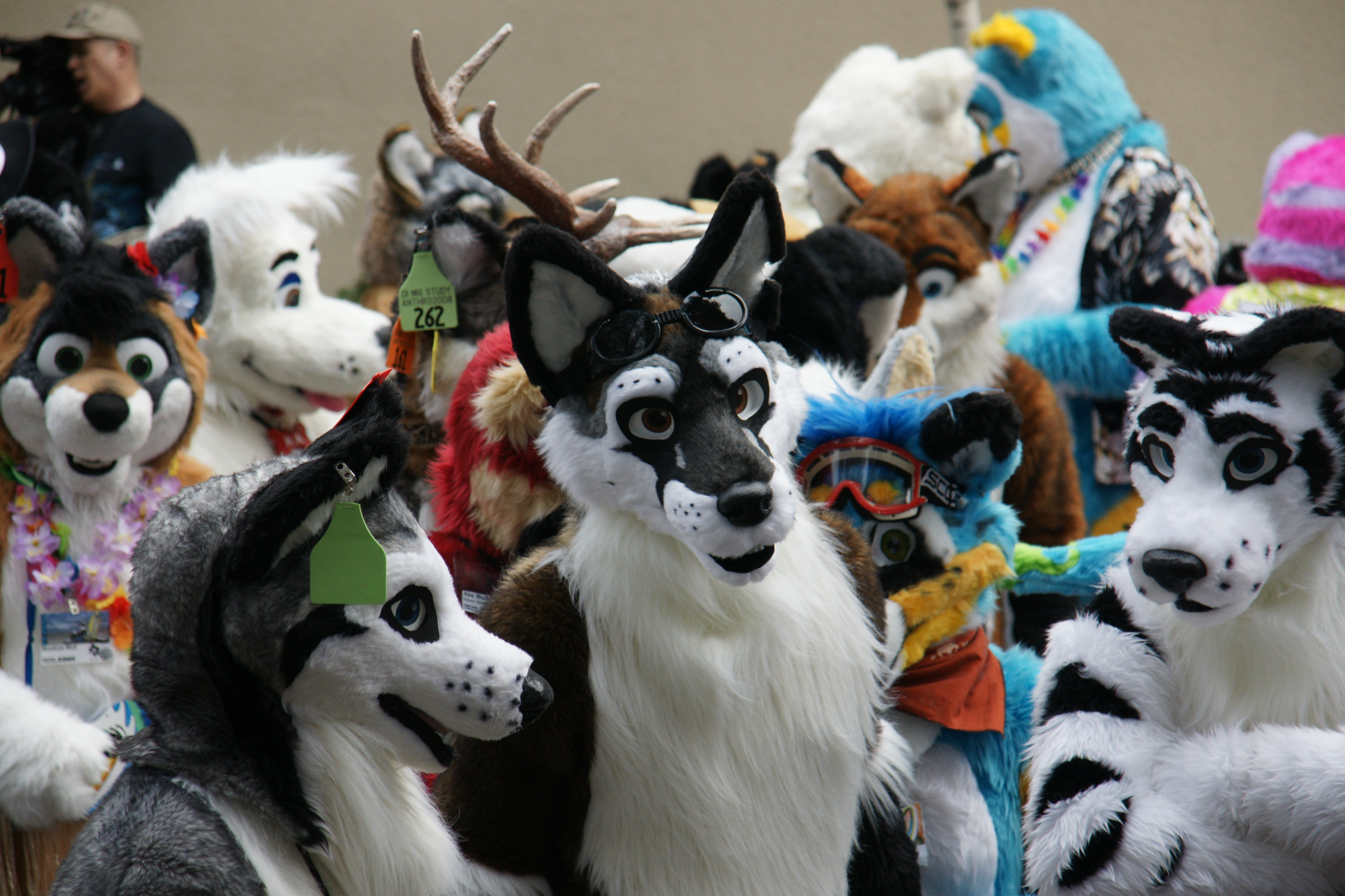 FurSuits-Gallery02