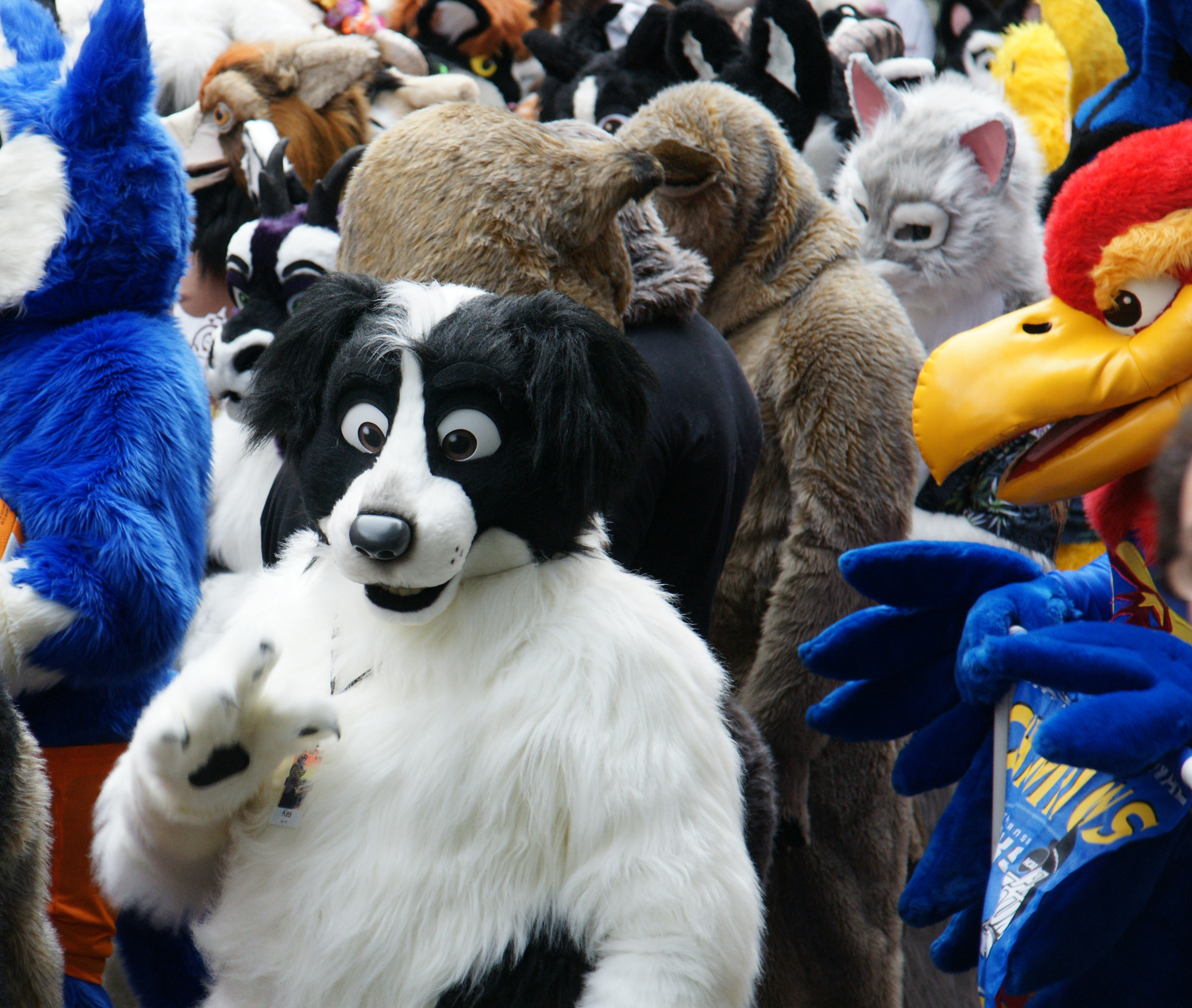 FurSuits-Gallery07