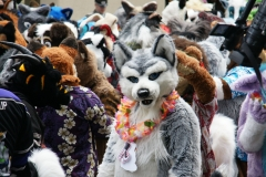 FurSuits-Gallery04