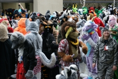 FurSuits-Gallery06