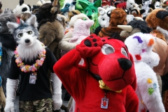 FurSuits-Gallery08