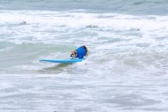 BullDogSurfing01