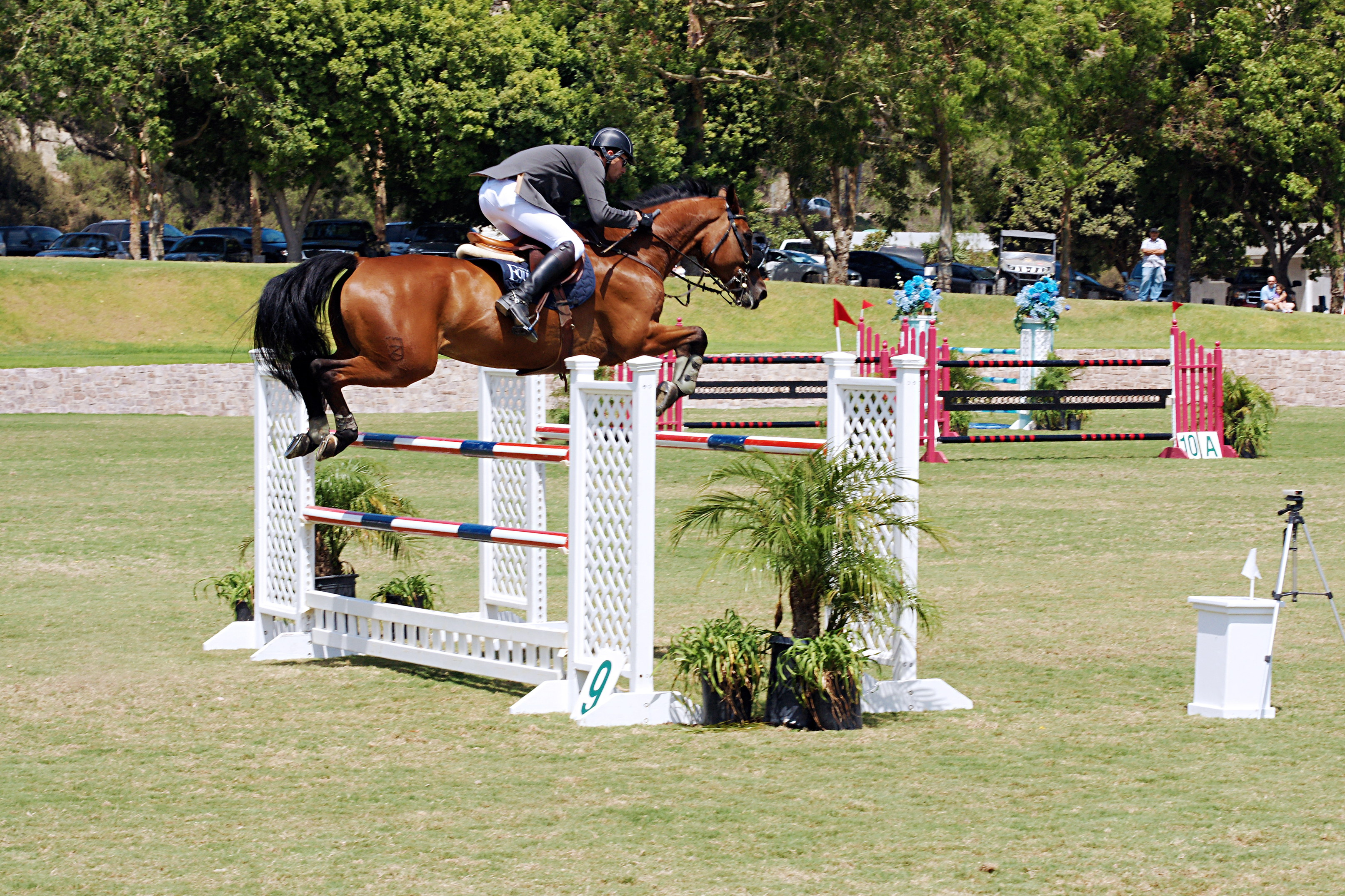 Del-Mar-Horse-Park-In-the-Air-Gallery05