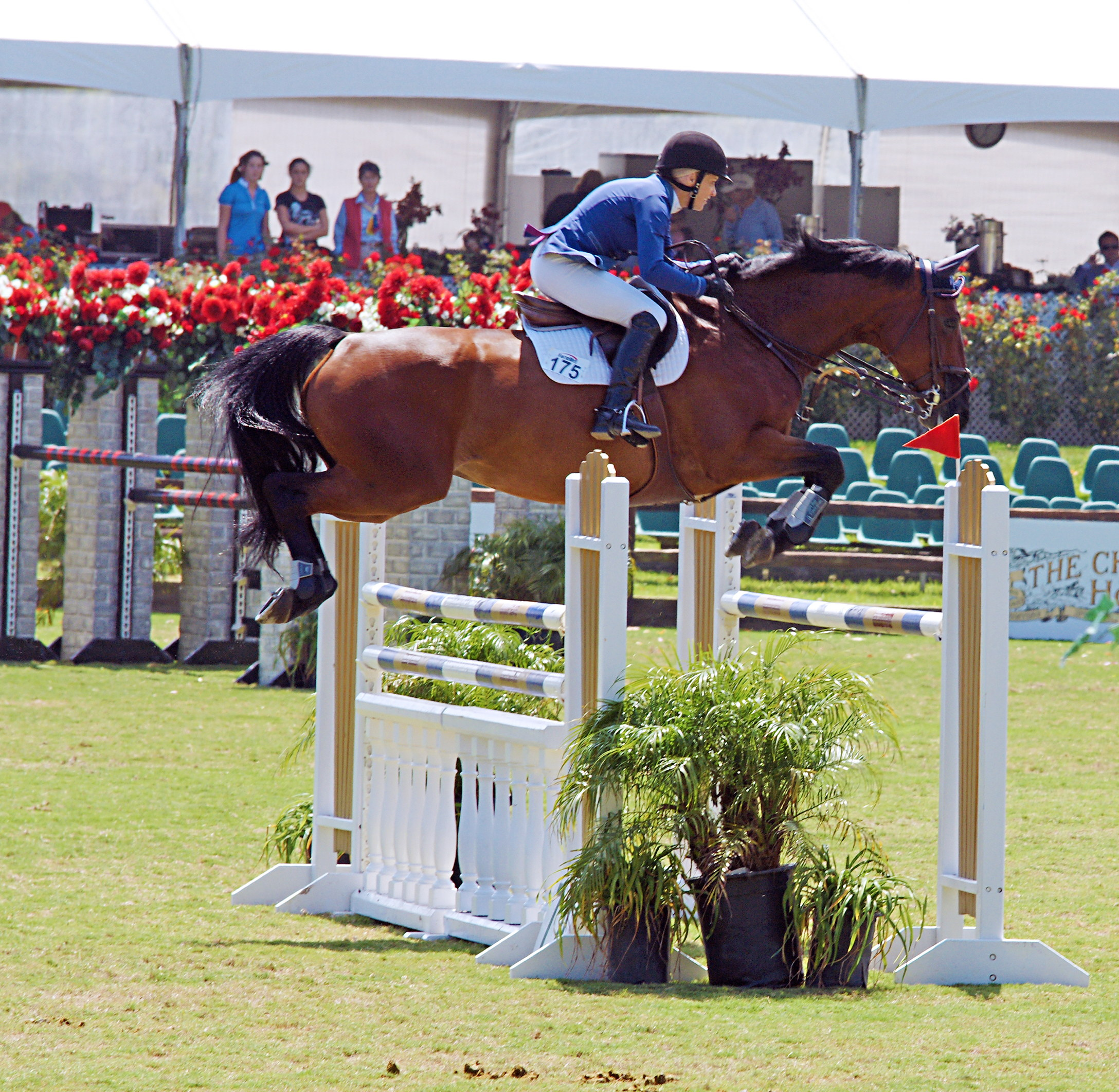 Del-Mar-Horse-Park-In-the-Air-Gallery07