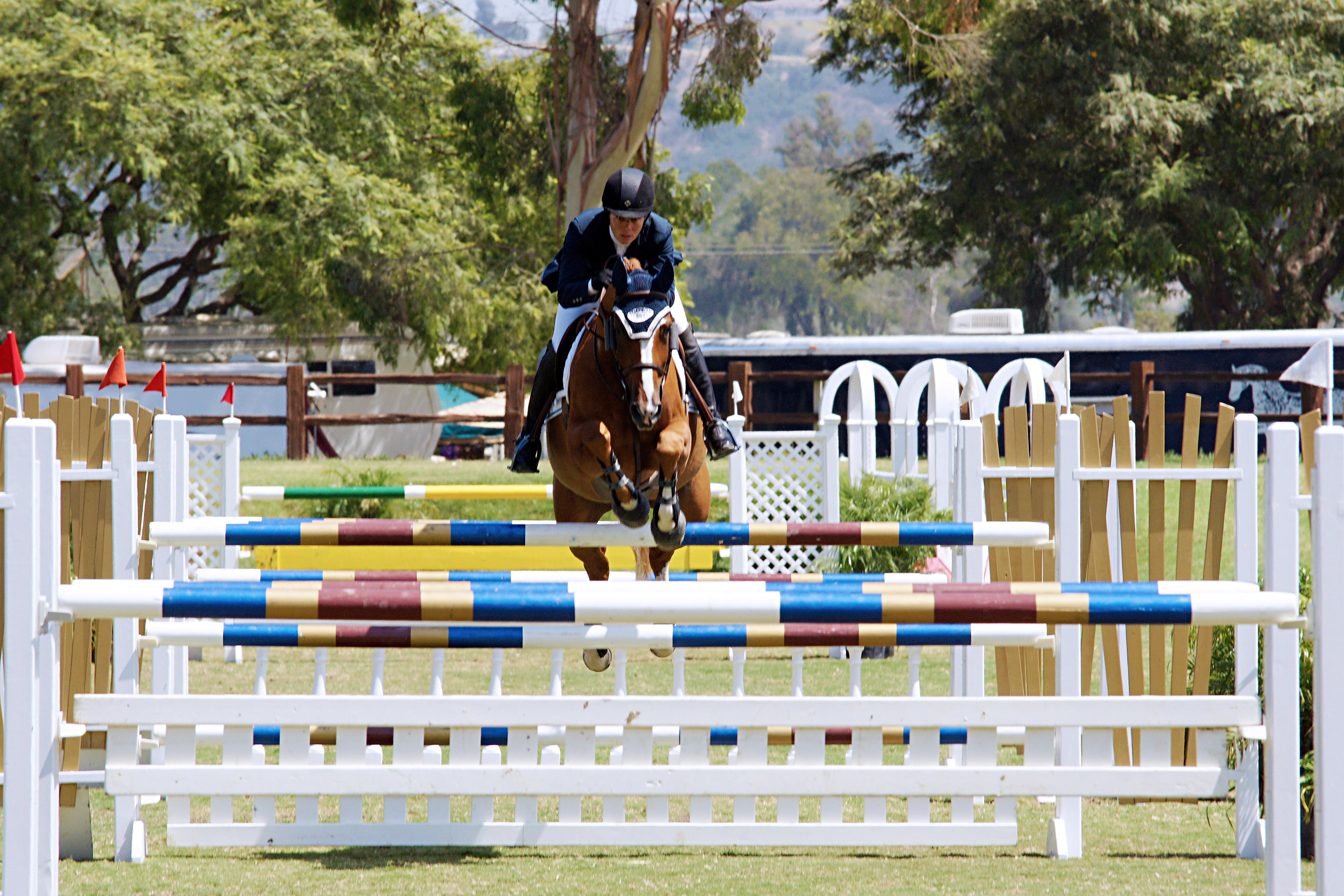 Del-Mar-Horse-Park-In-the-Air-Gallery09