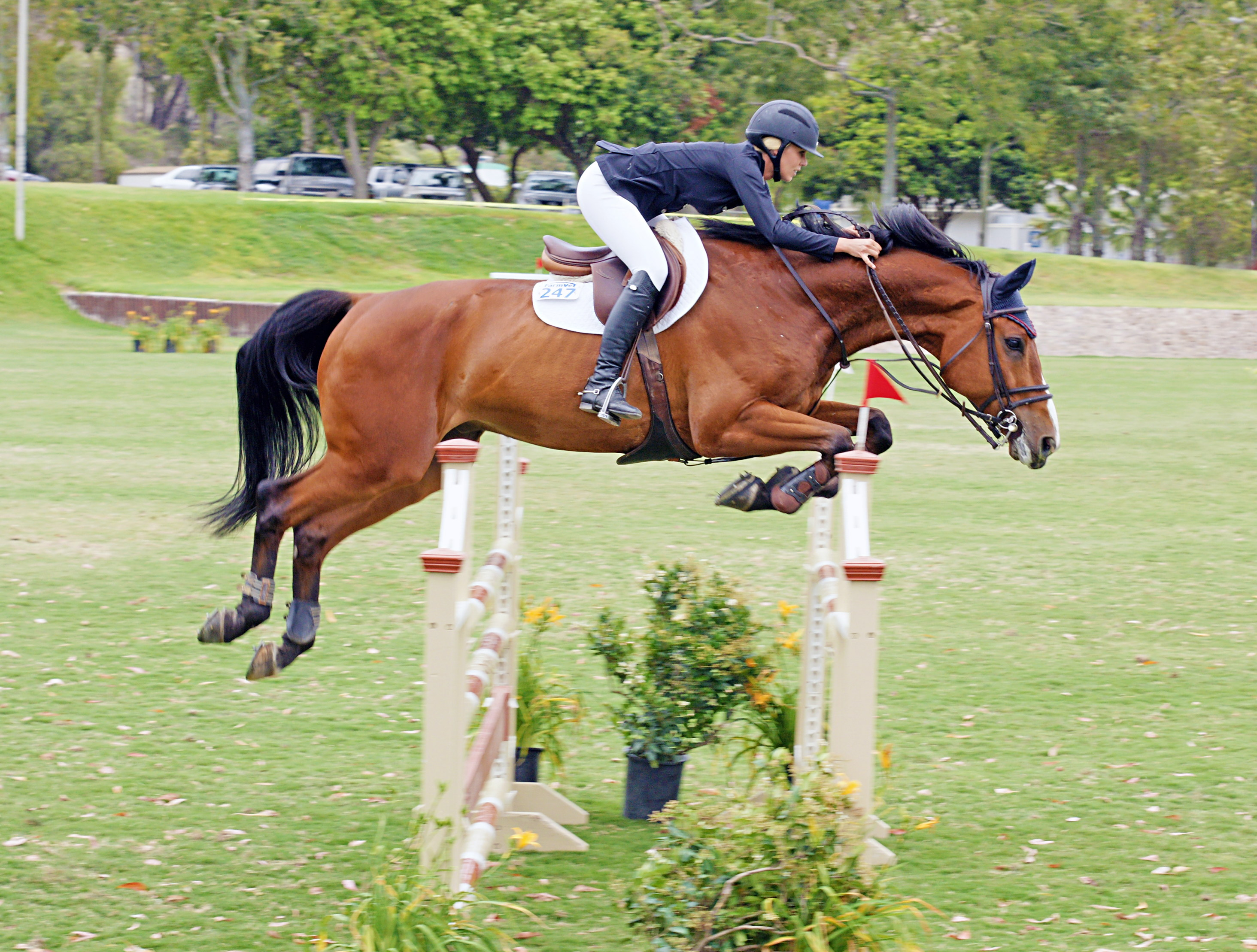Del-Mar-Horse-Park-In-the-Air-Gallery21