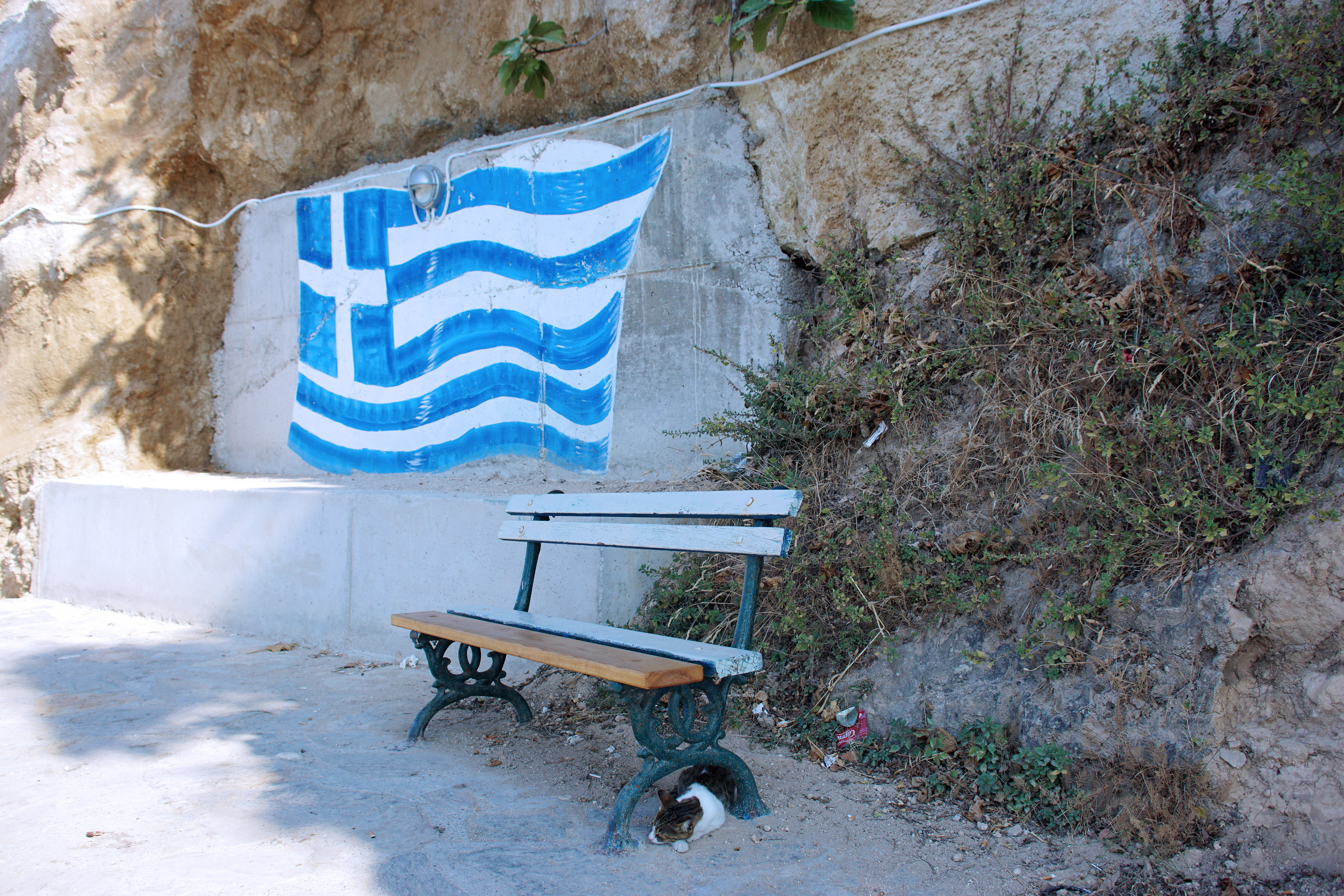 Samos-Greek-Cats03