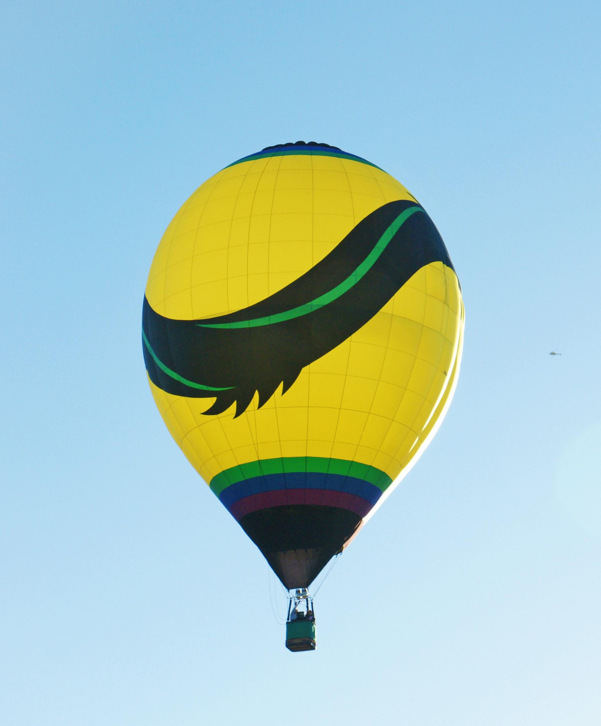 aibf-Single-Balloons-Gallery13