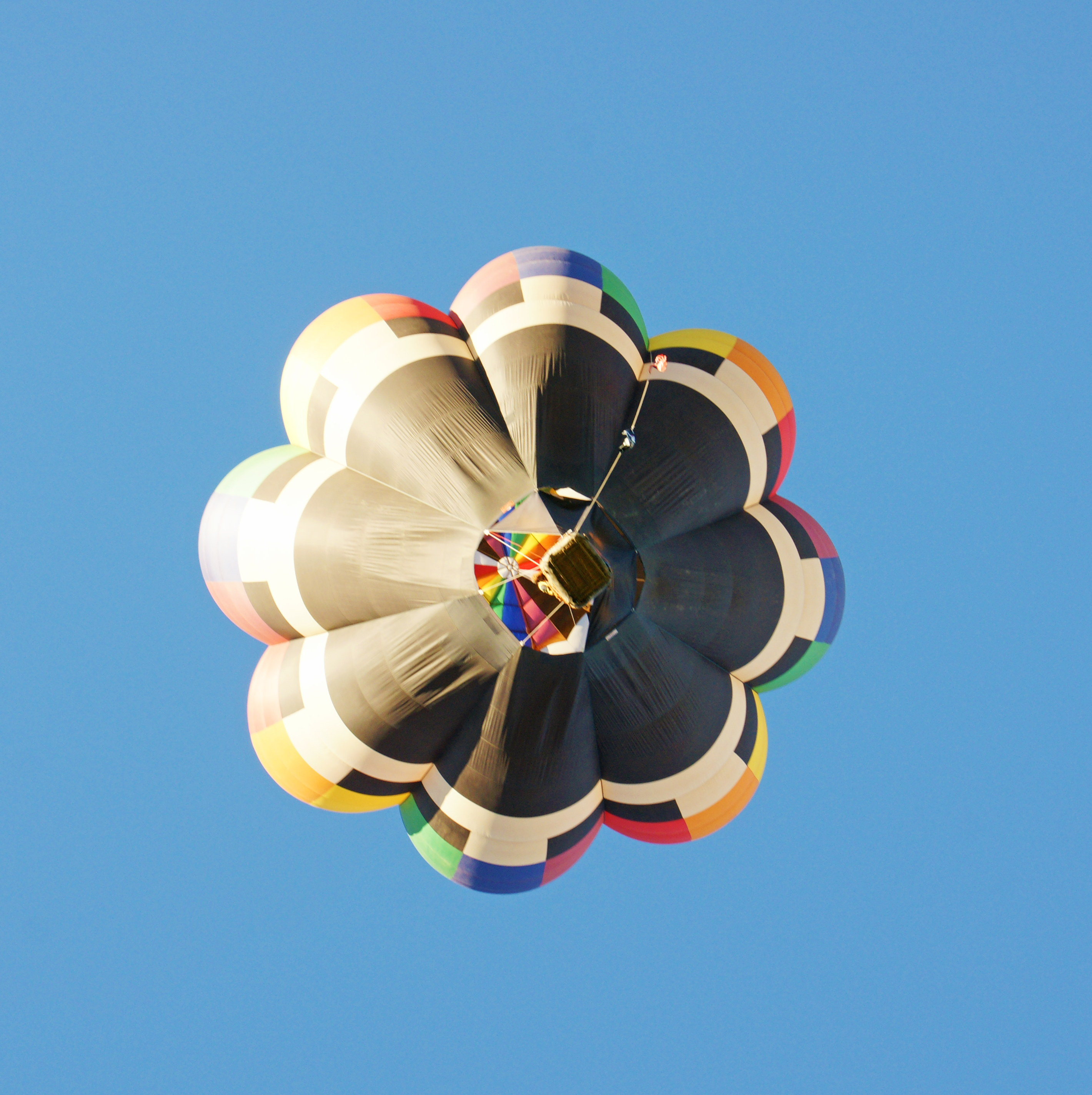 aibf-Single-Balloons-Gallery14