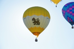 aibf-Single-Balloons-Gallery22