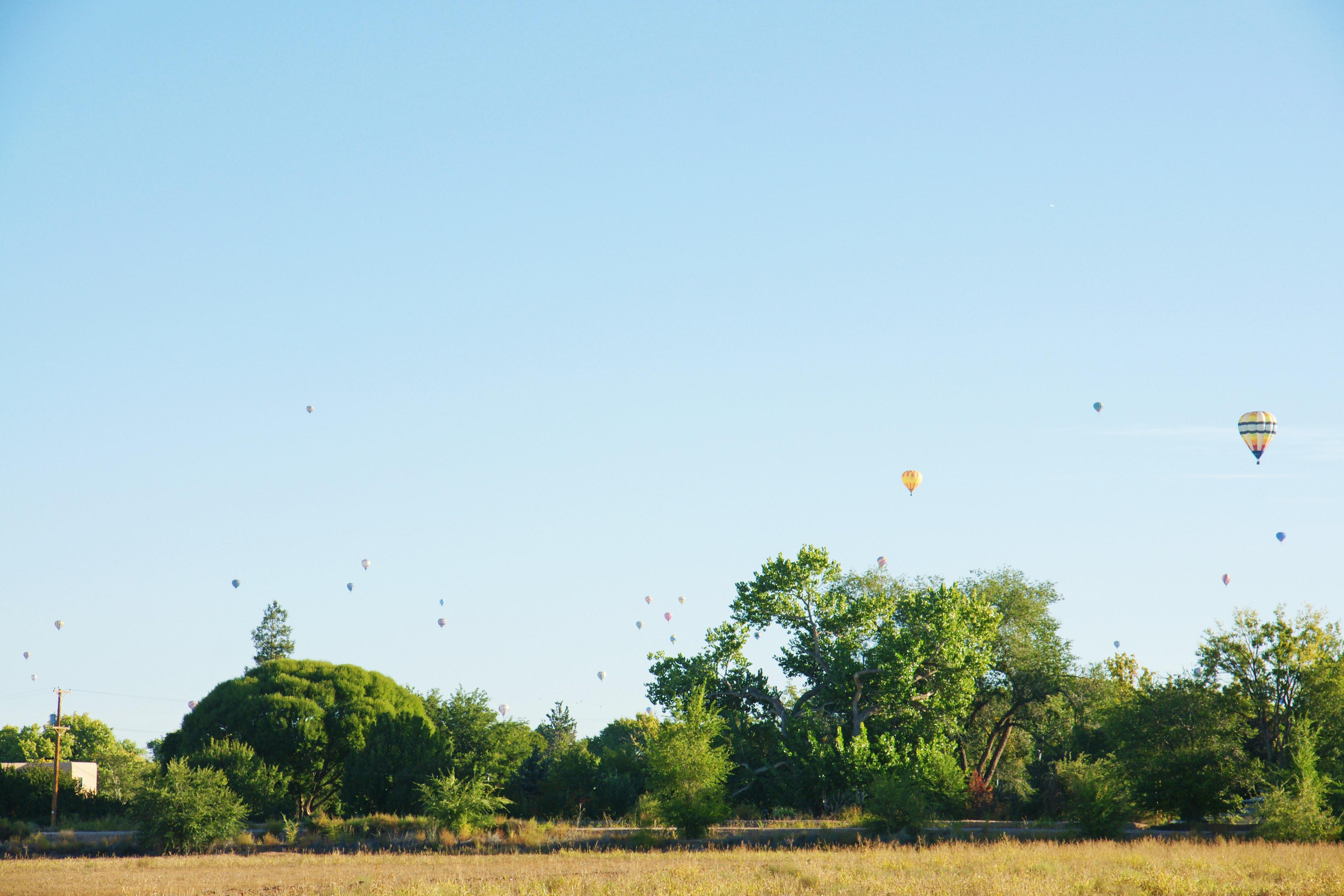 aibf-Balloon-Descent-Gallery05