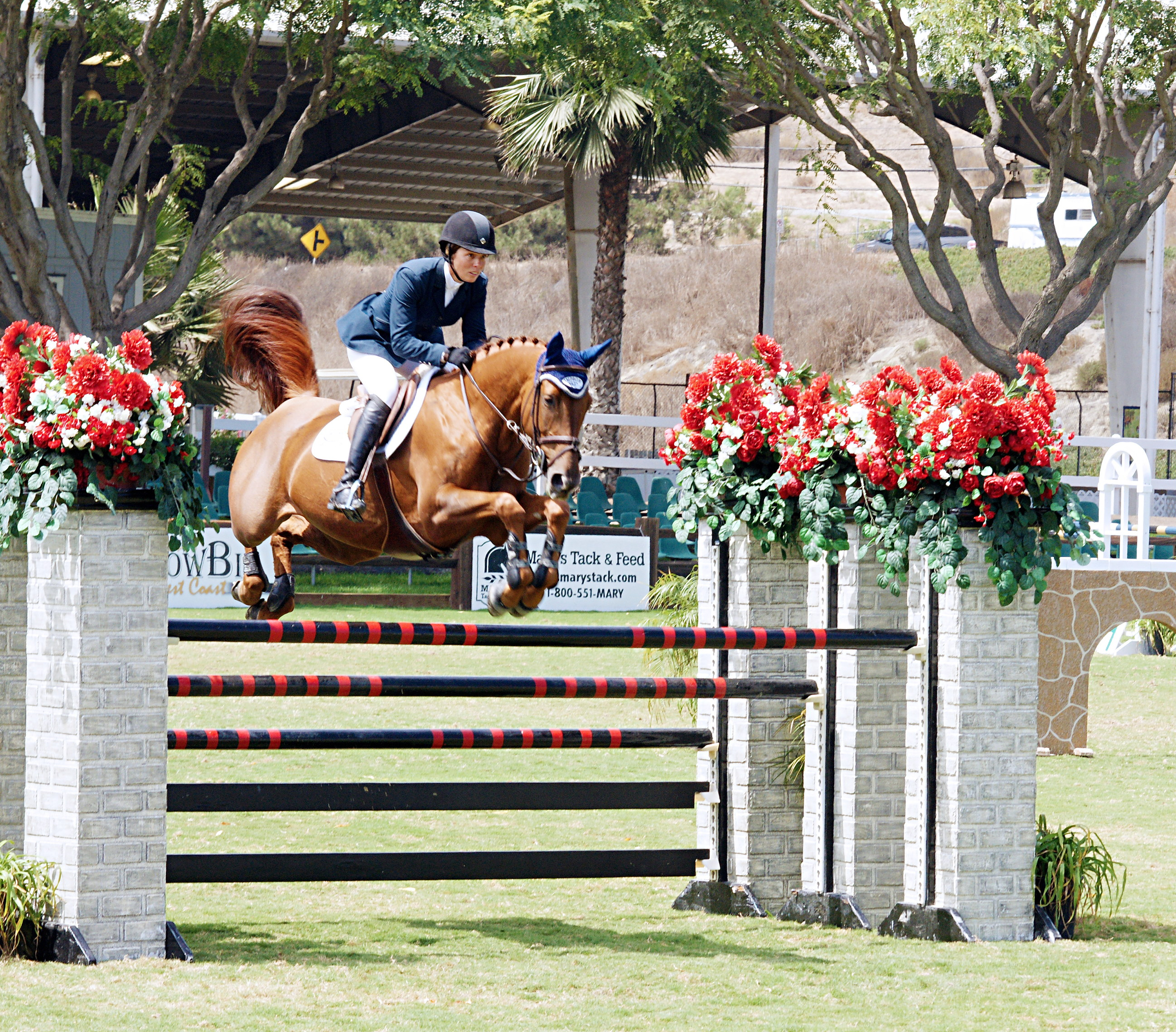 Del-Mar-Horse-Park-In-the-Air-Gallery01