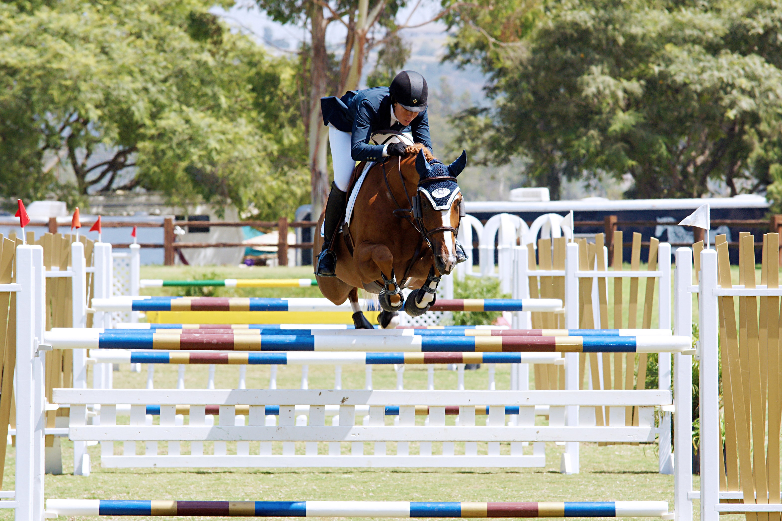 Del-Mar-Horse-Park-In-the-Air-Gallery23