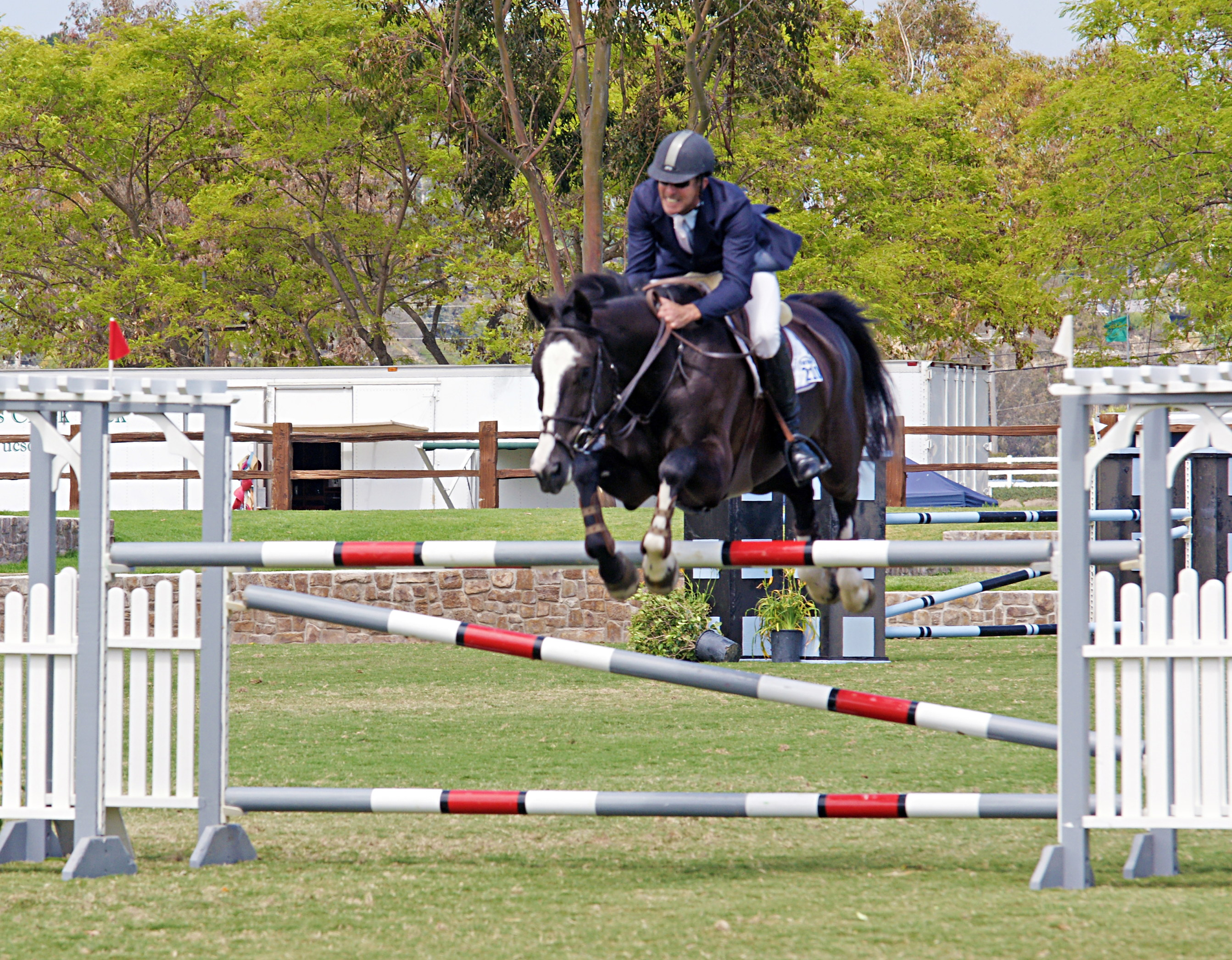 Del-Mar-Horse-Park-In-the-Air-Gallery24