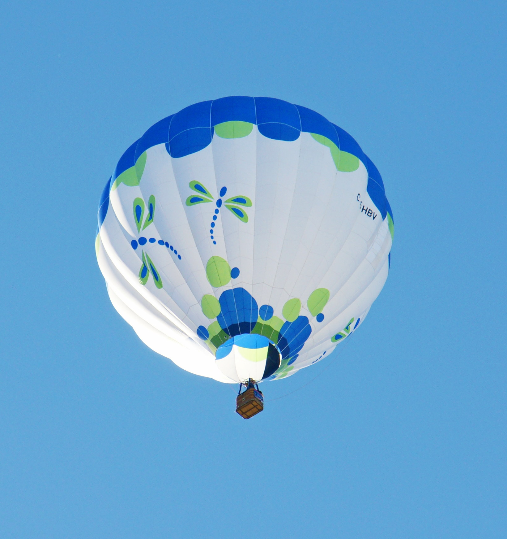 aibf-Single-Balloons-Gallery17
