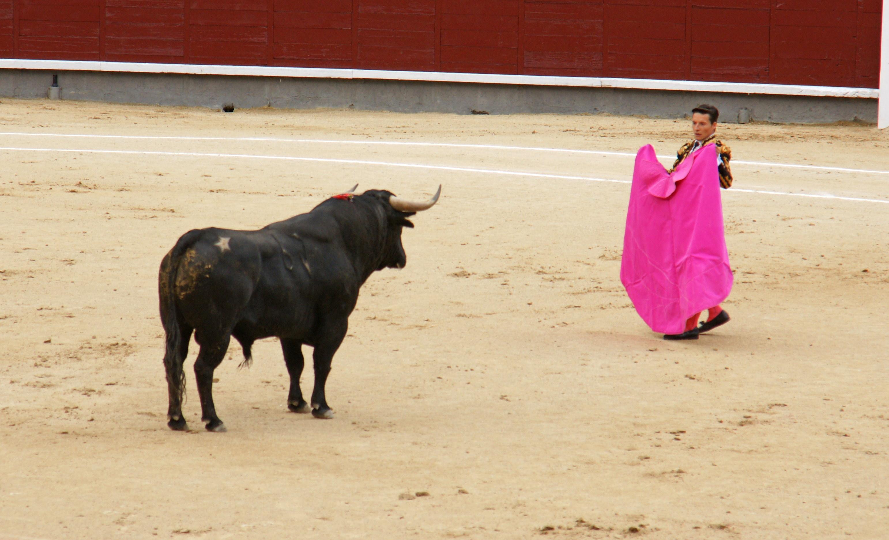 Tauromaquia-Matador-Gallery04