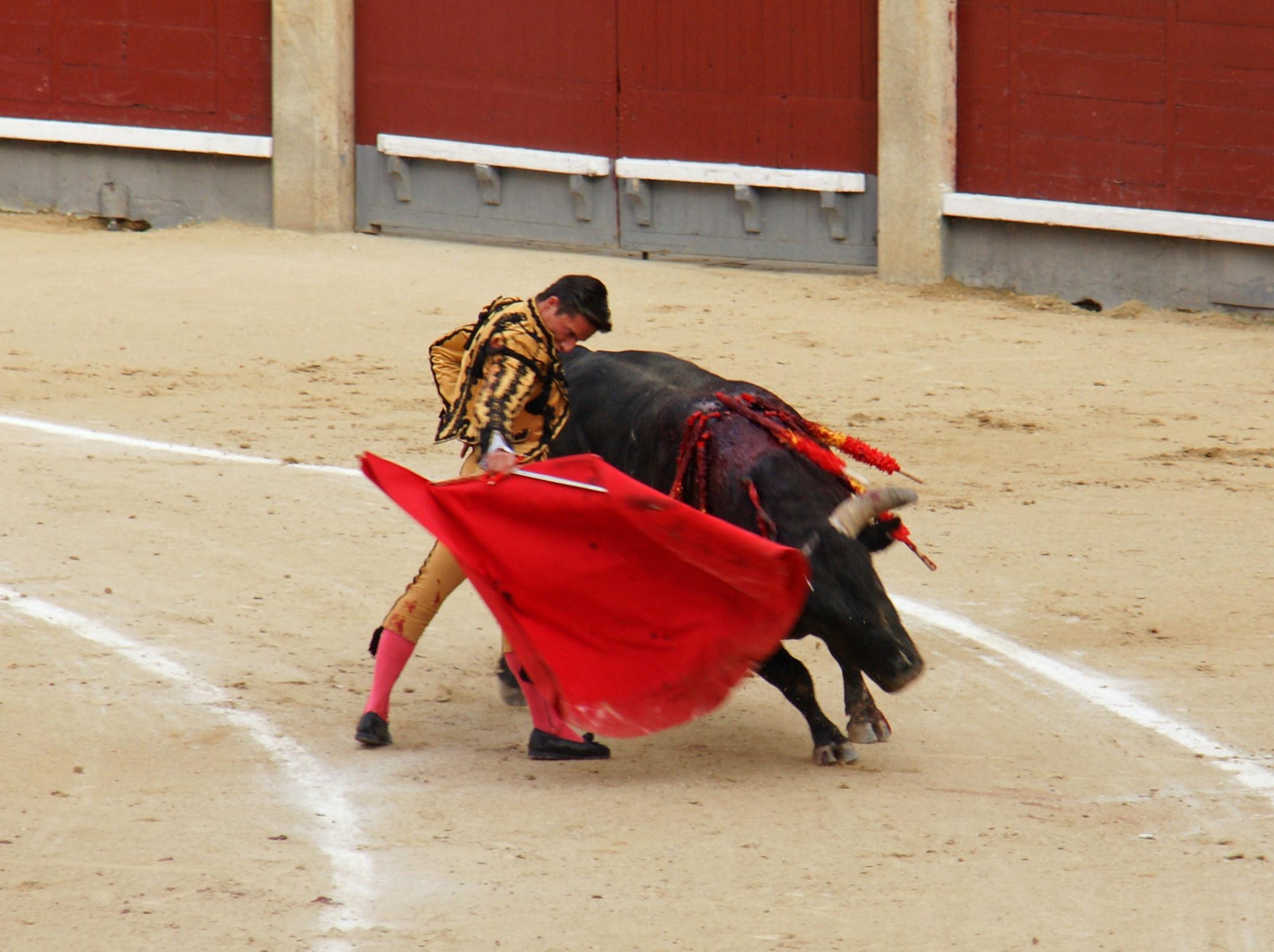 Tauromaquia-Matador-Gallery13