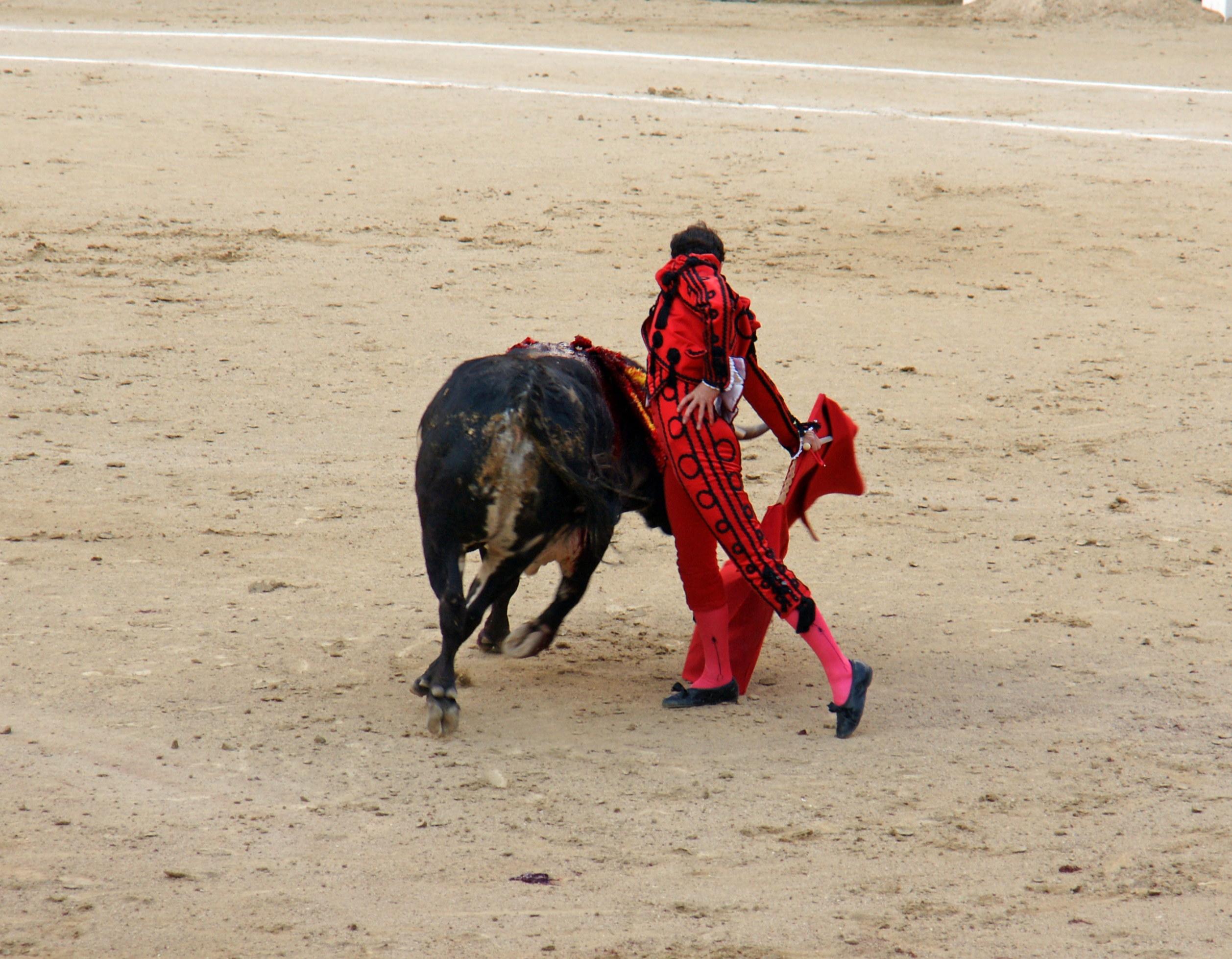 Tauromaquia-Matador-Gallery24