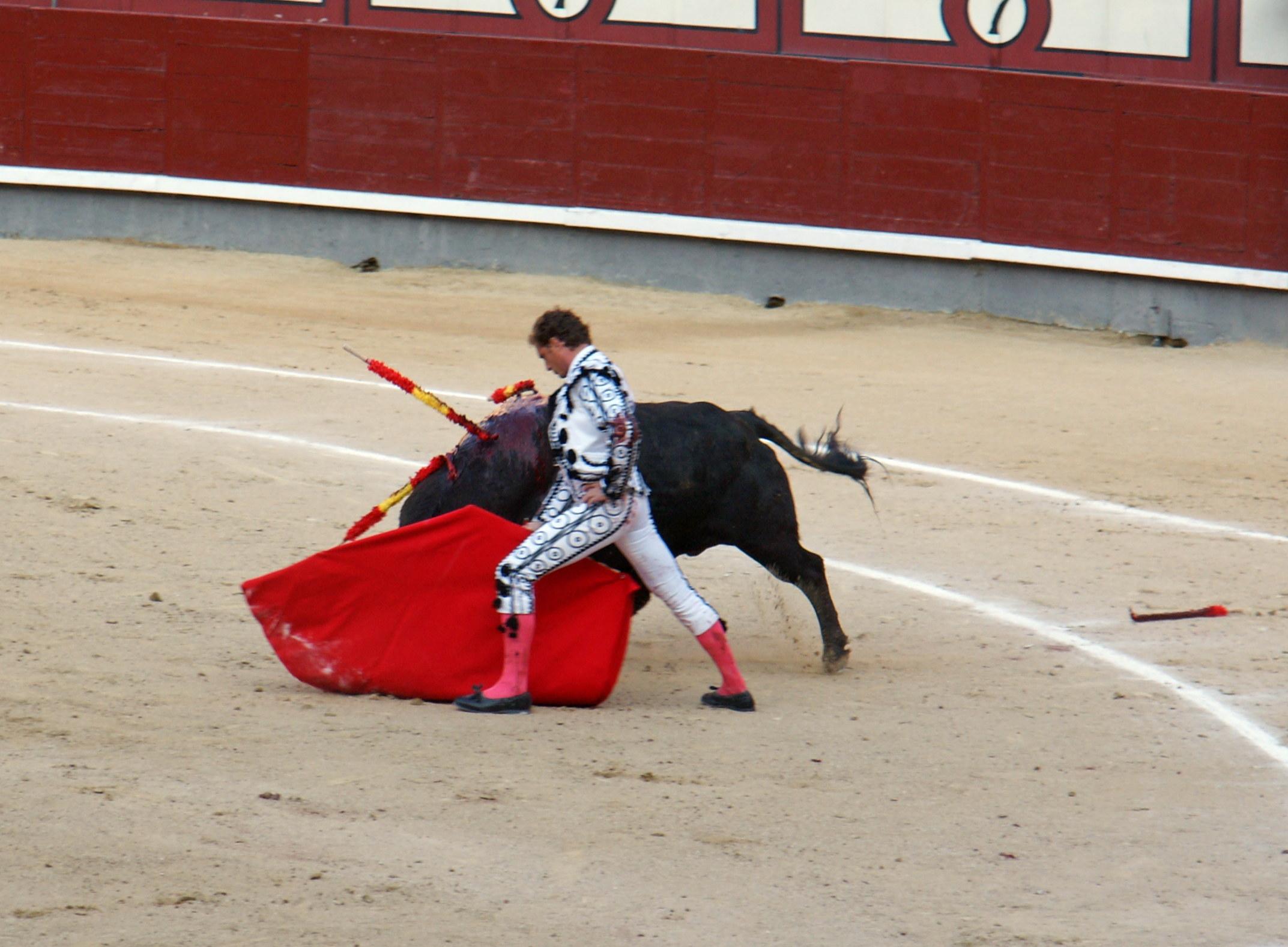 Tauromaquia-Matador-Gallery28