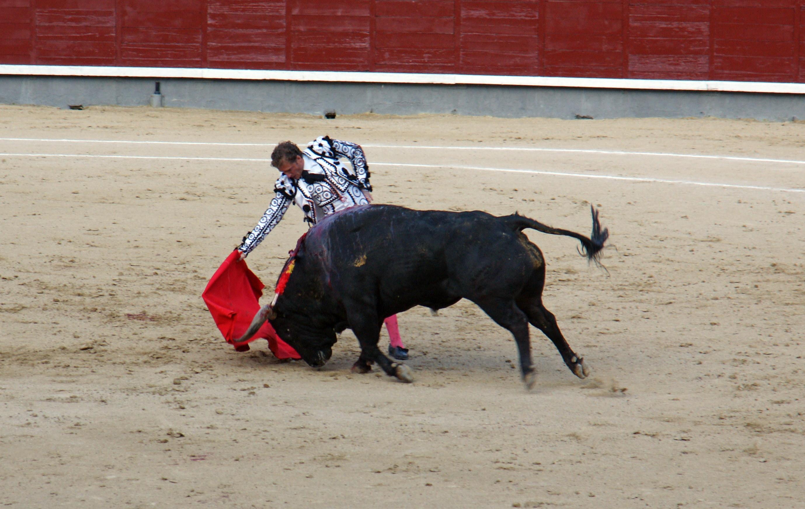 Tauromaquia-Matador-Gallery29
