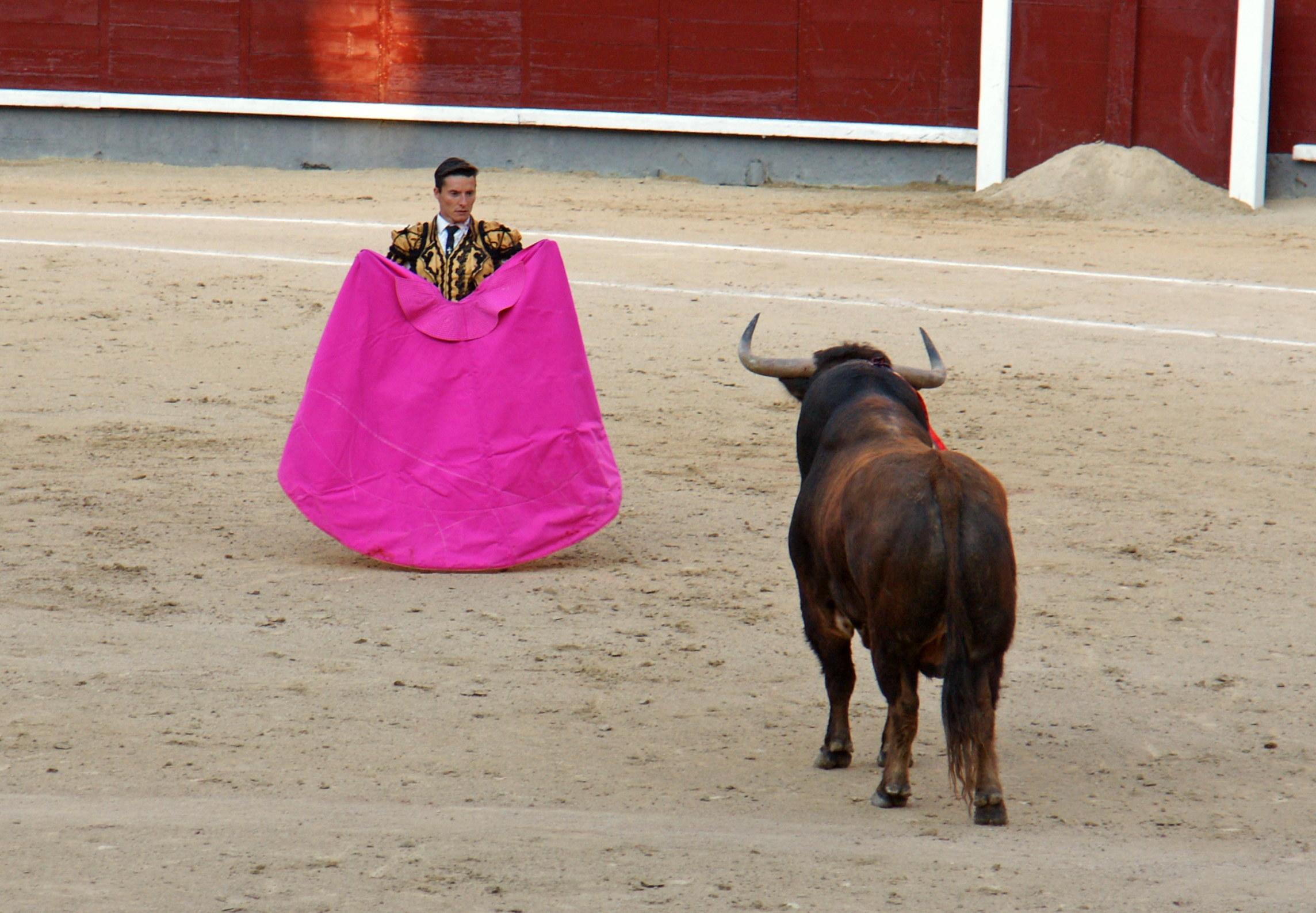 Tauromaquia-Matador-Gallery33