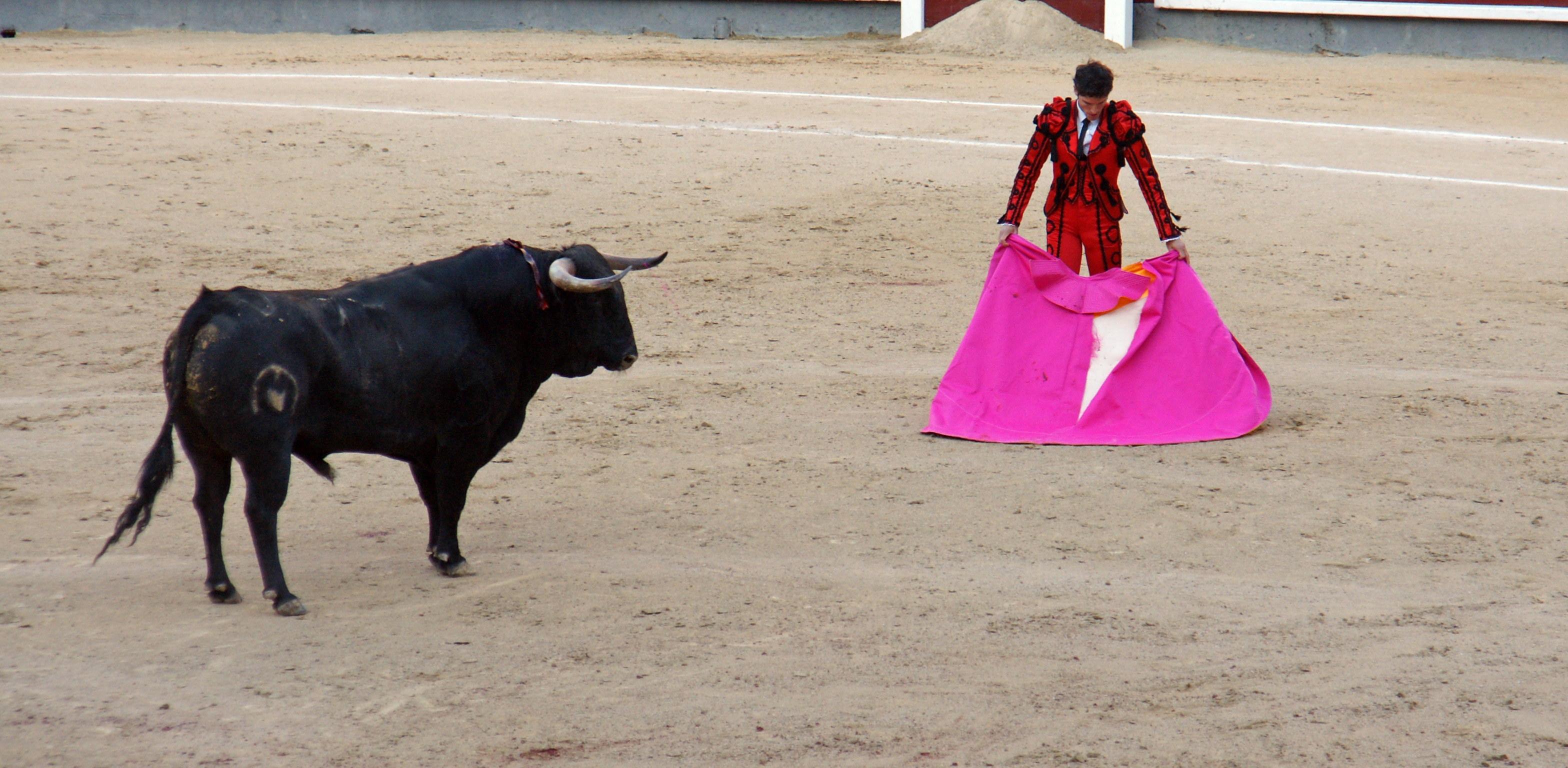 Tauromaquia-Matador-Gallery41