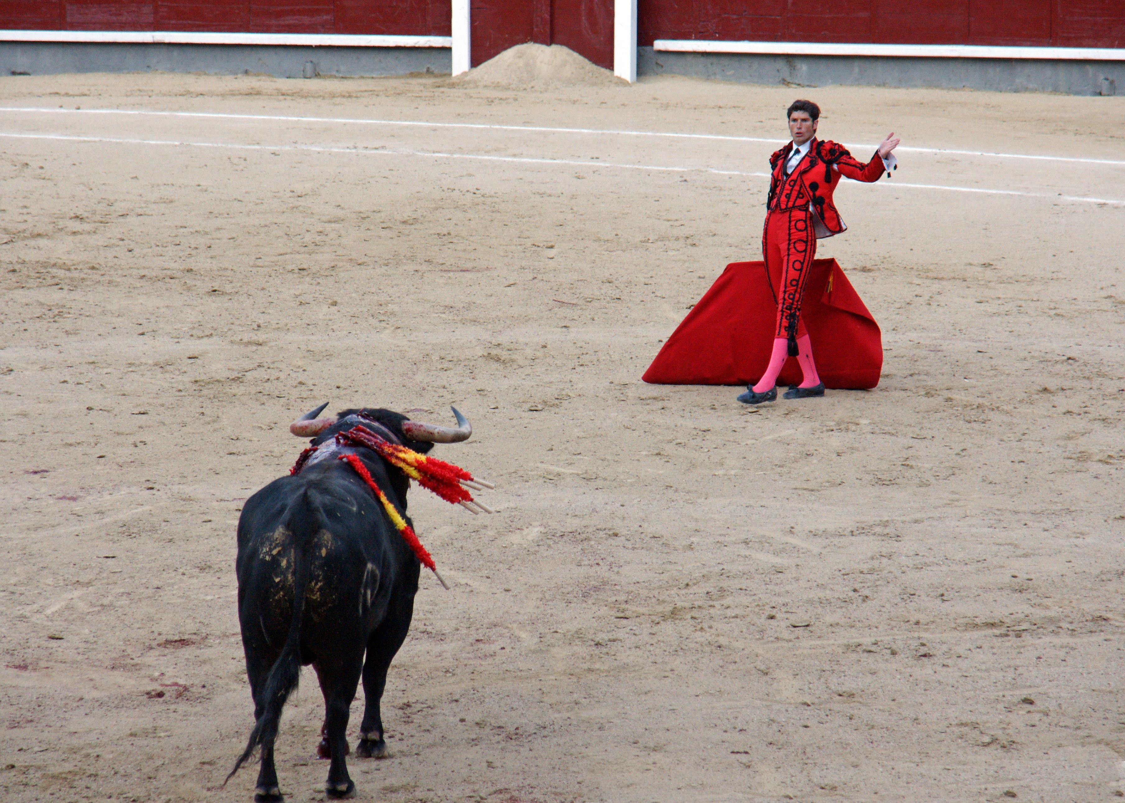 Tauromaquia-Matador-Gallery44