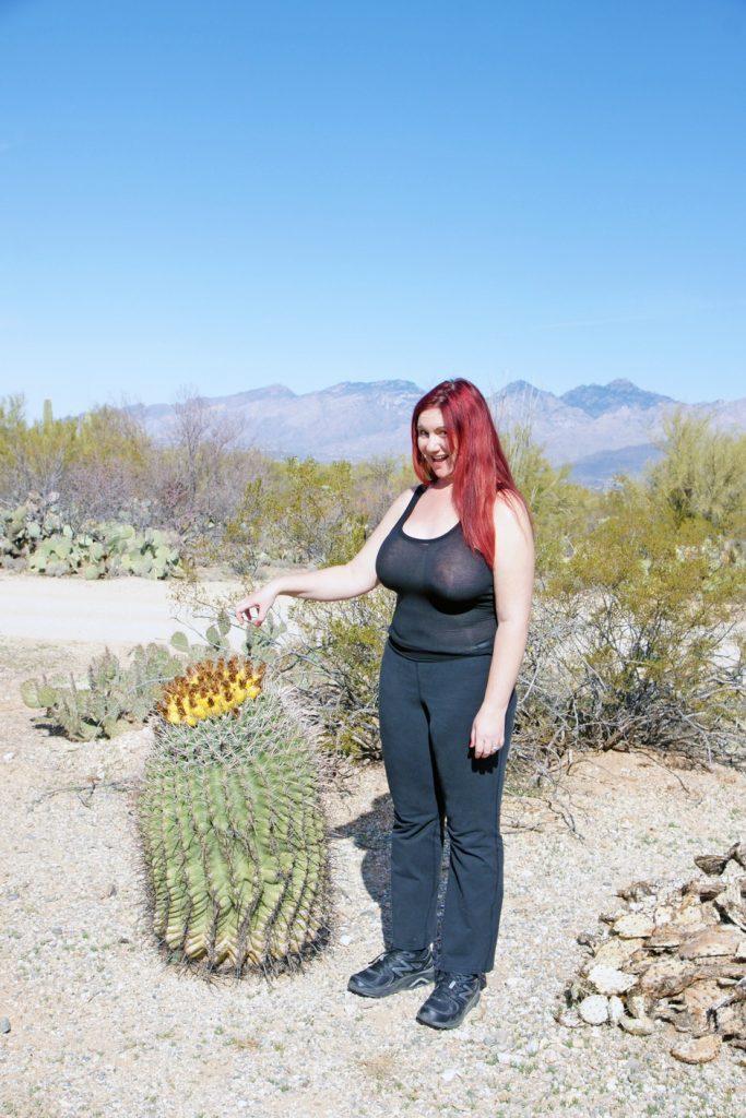 A fishhook barrel cactus with fruit.