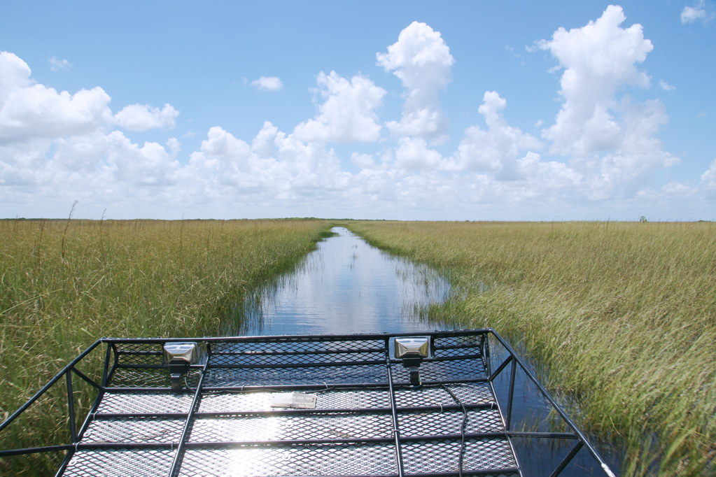 The view behind us as we travel the Everglades.