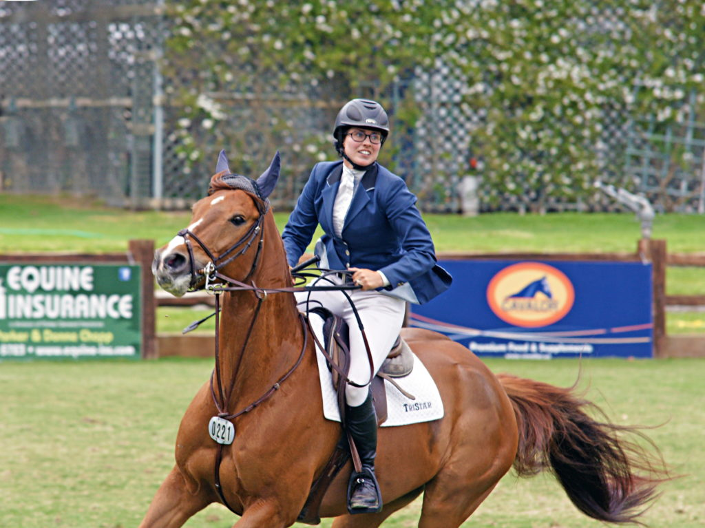 Notice the Figure Eight noseband, one of more popular nosebands used by jumpers.