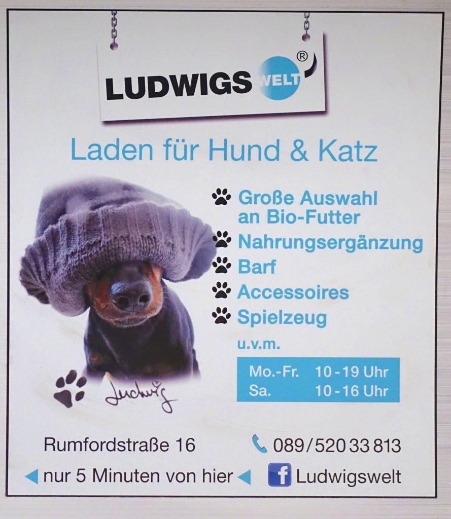 Canine fashion, Munich-style.