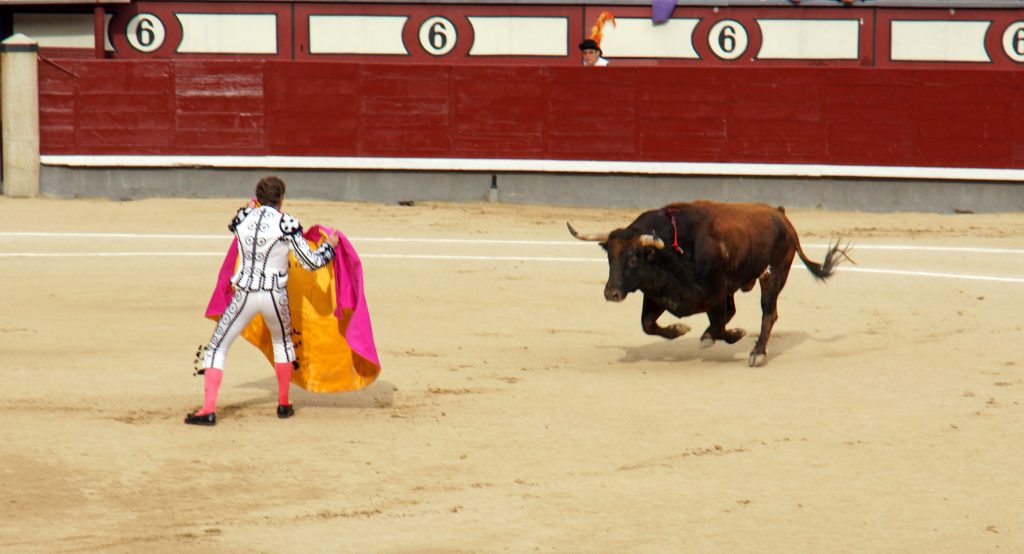 The matador enters the ring, alone with the bull.