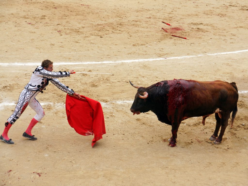 The matador prepares for the estocada.