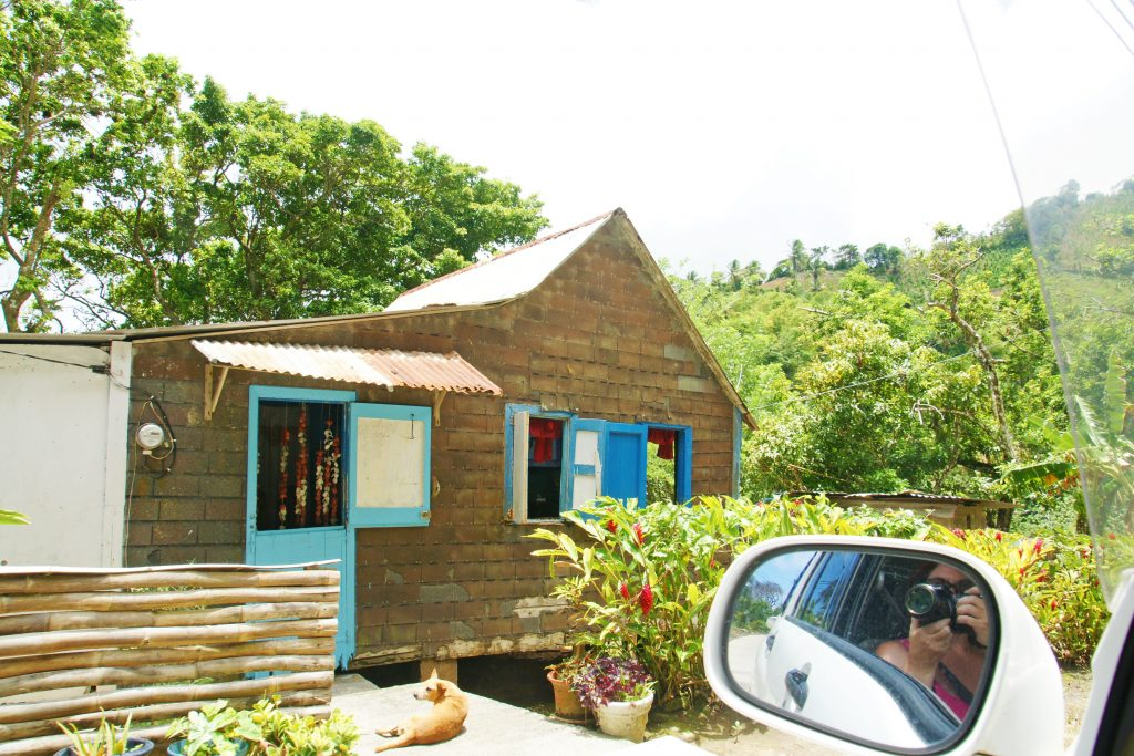 A dwelling in the forest of Dominica.