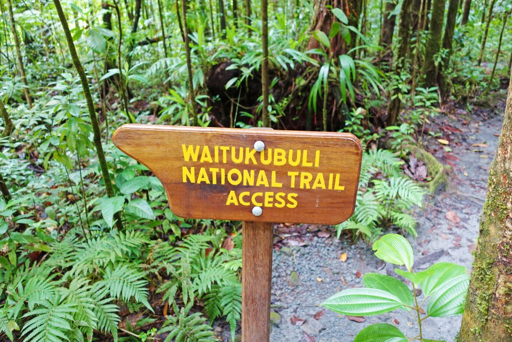 The trailhead leading to the falls.