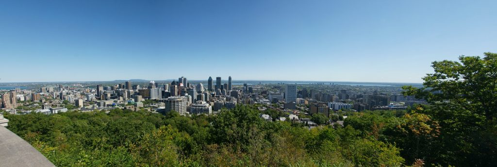 The view from the top of Mount Royal.