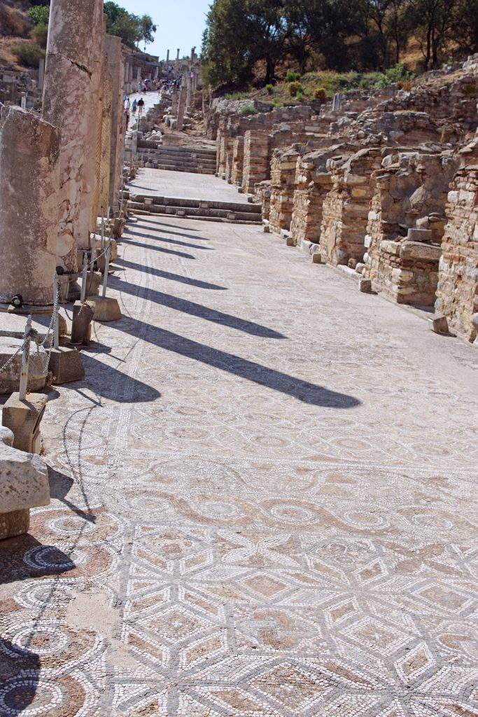 The mosaic sidewalk in front of the Terrace houses.