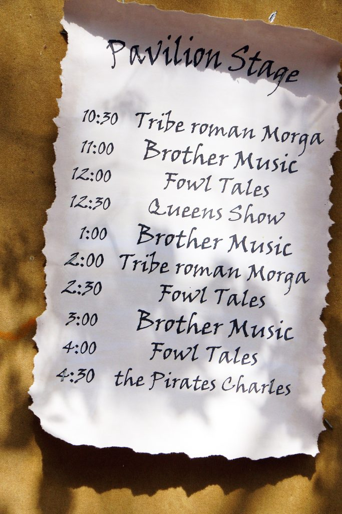 Some of the many performances at the Faire.