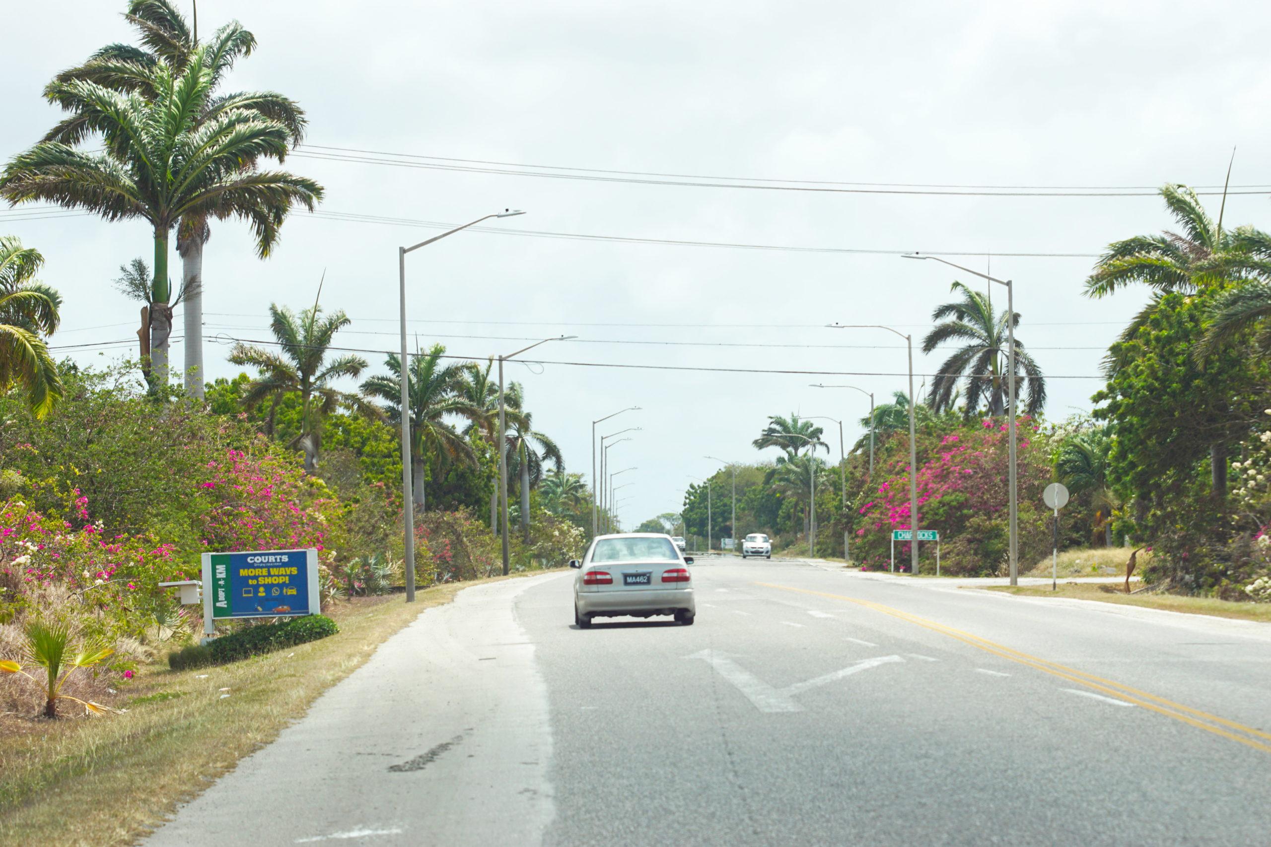 Look!  Barbados!